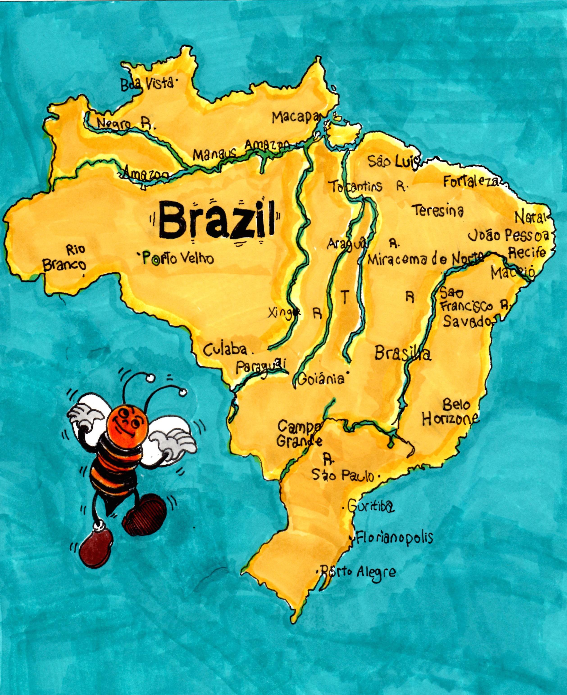 brazil-bee.jpg
