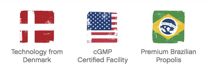 logo-flags-cgmp-scandinavian-brazil.png