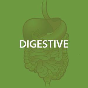 mwz-digestive.png