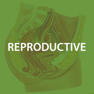 mwz-reproductive.png